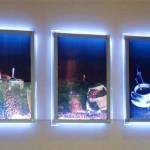 In tranh hộp đèn chất lượng cao Cầu giấy - Hà Nội